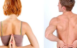 Лечебная гимнастика для спины от сколиоза
