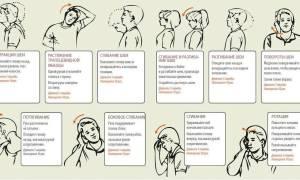 Физические упражнения при остеохондрозе шейного отдела позвоночника