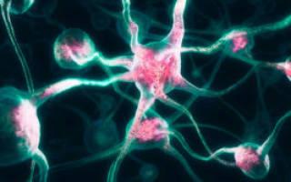 Невралгия симптомы у взрослых спина лечение