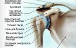 Артрозо артрит акромиально ключичного сочленения лечение