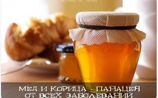 Мед с корицей против артрита